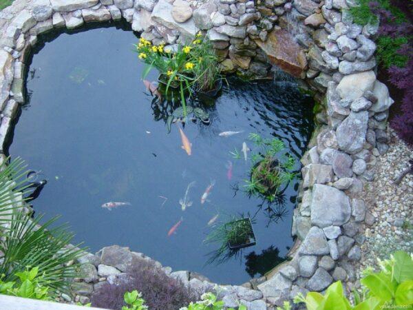 Искусственный водоём с рыбками