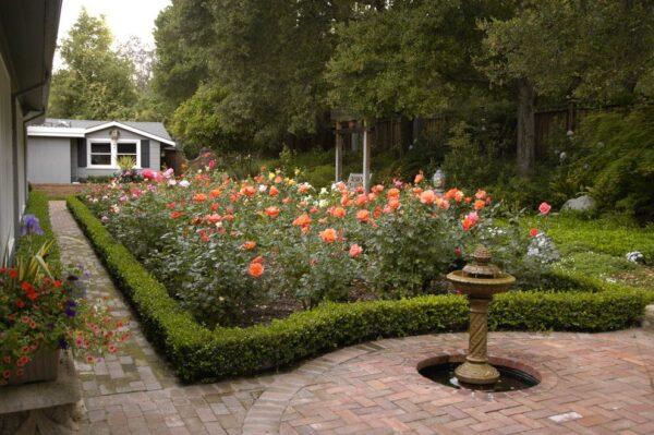 Ландшафтный дизайн построенный на розах