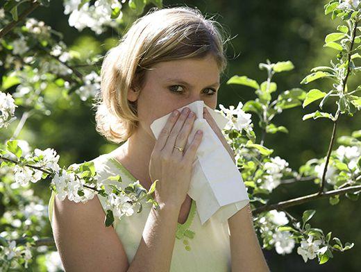 Аллергия - ужасное заболевание, в особенности для садоводов