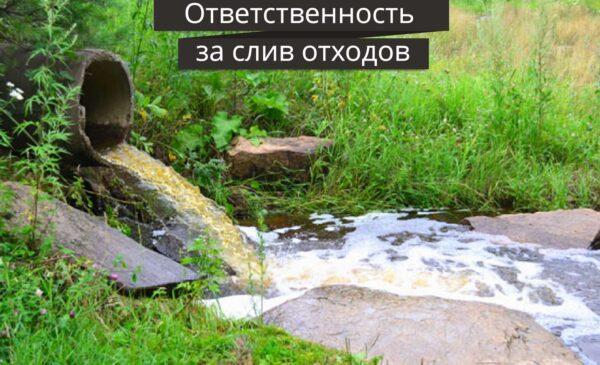 Слив отходов с дачного участка в окружающую среду – запрещён