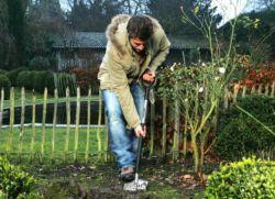 Нельзя сажать картошку и серьёзно заниматься облагораживанием огорода или сада на даче в пасху