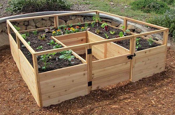 Вот такой небольшой сад из нескольких грядок, которые не нужно перекапывать каждый сезон