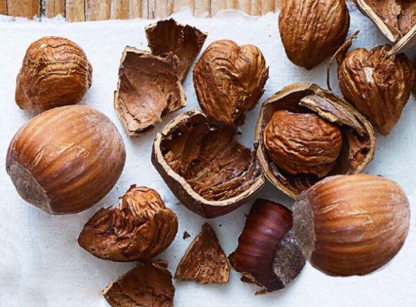 Приготовьте из листьев ореха чай, и вы ускорите процесс восстановления после травм или операций