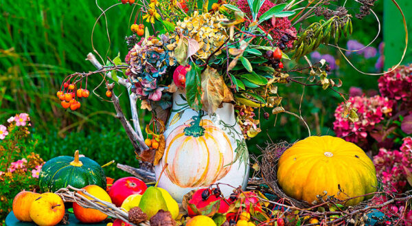 После лета начинается осень – время для сбора урожая и подготовка дачи на следующий год