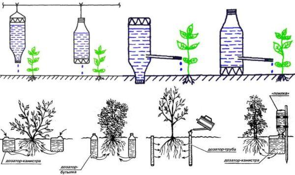 Как работает система капельного полива с помощью пластиковых бутылок