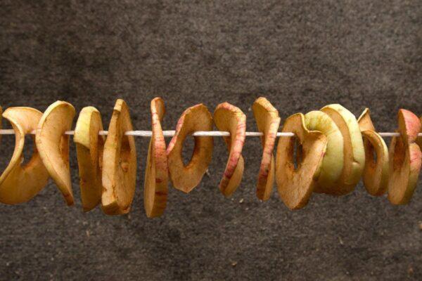 Благодаря тому, что сушиться яблоки будут в тени, а не на солнце, в них сохраниться больше витаминов
