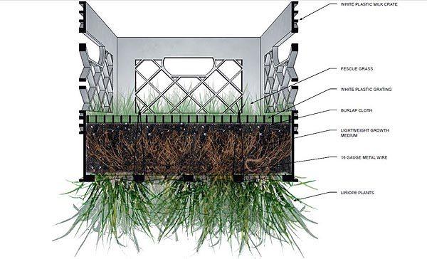Схема посадки растений в ящики