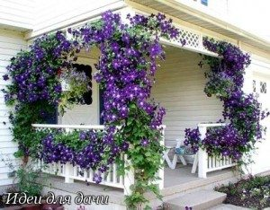 Постройка, украшенная цветами.